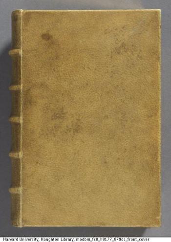 bookboundinskin
